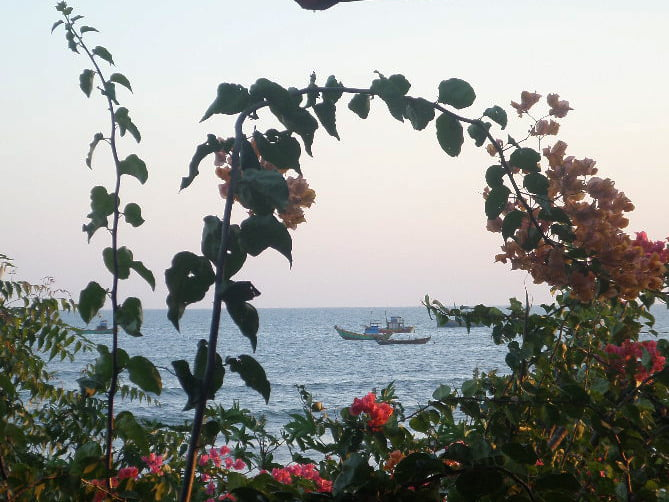 Đến Nhà Gỗ, cà phê ngắm thuyền trên biển