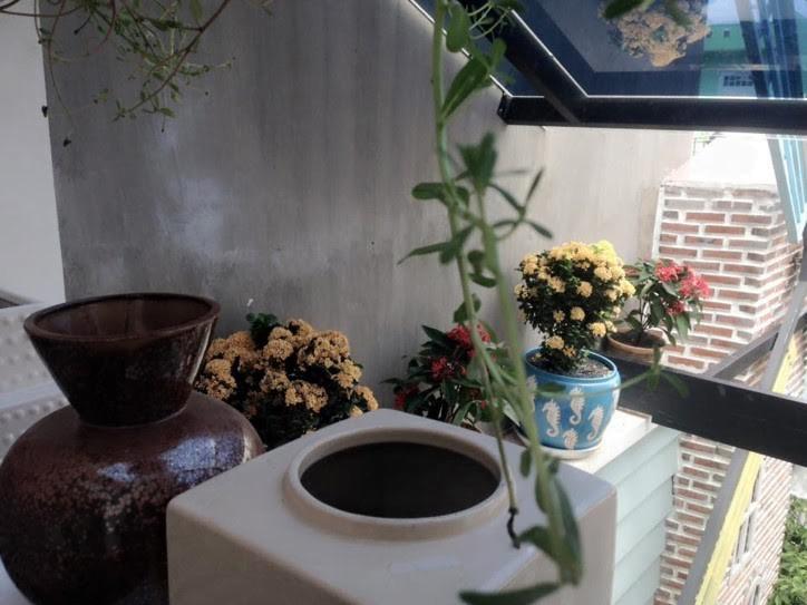 Cà phê MT, chiếc hộp cổ tích