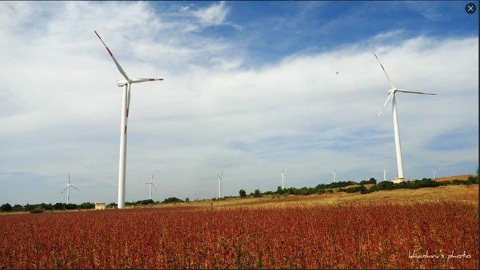 Check-in cánh đồng gió Tuy Phong