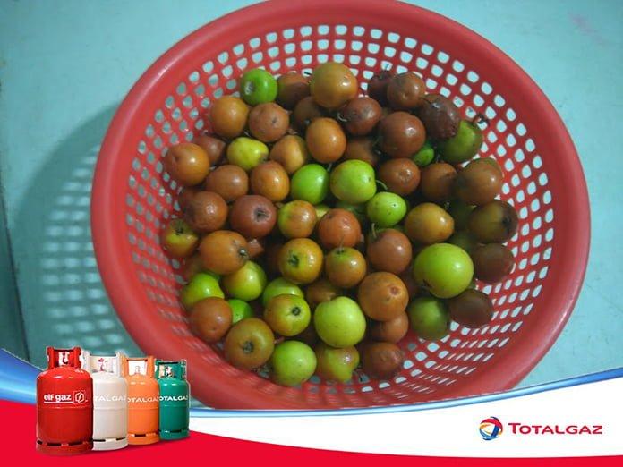 Táo Bình Thuận