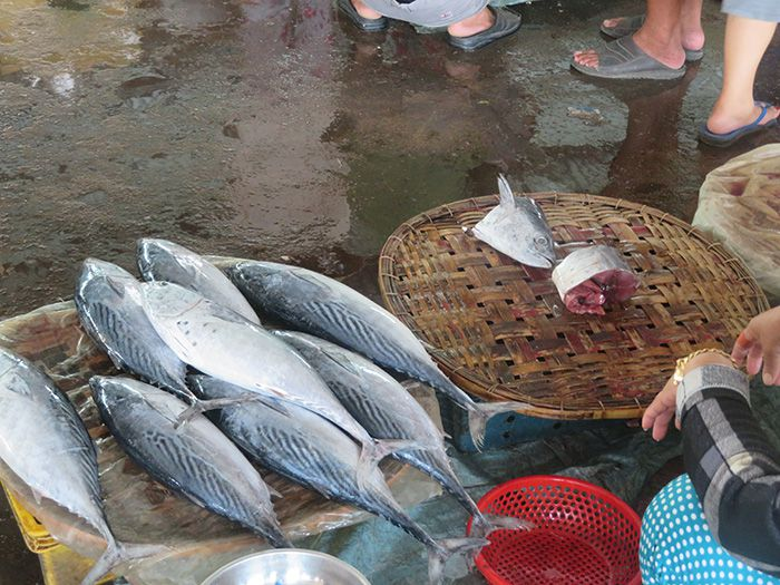 cá ngừ ở chợ
