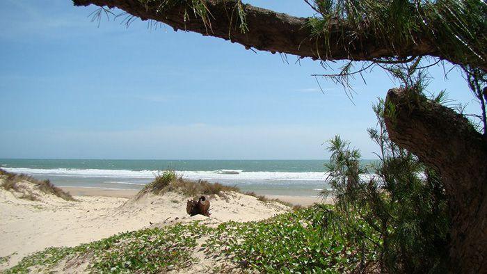 Biển đồi dương La Gi