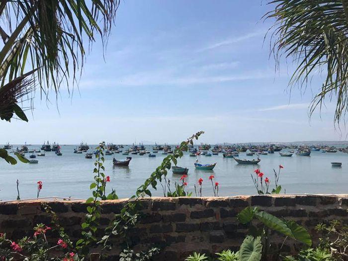 Một góc nhìn từ homestay