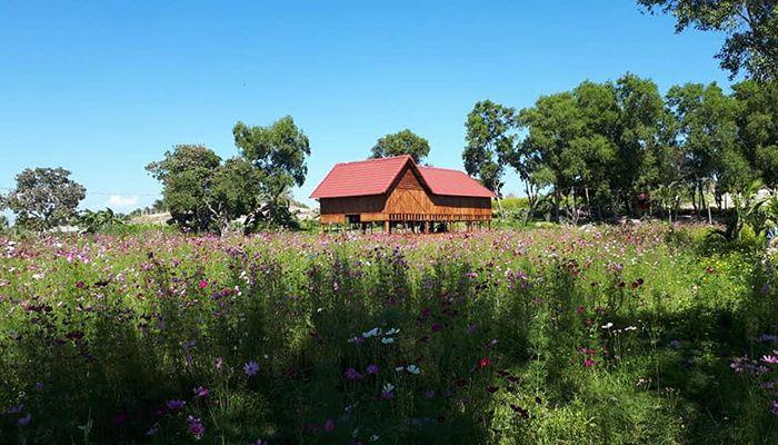 Vườn Quê Thanh Nhã
