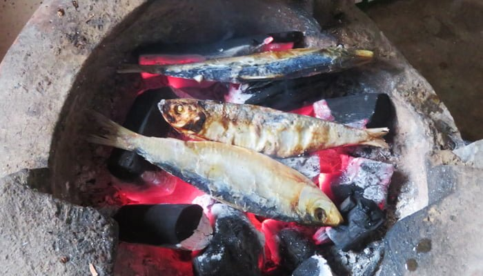 nướng cá trích khô