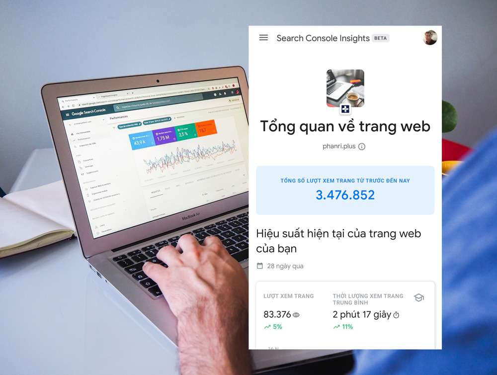 Giao diện của Search Console Insights