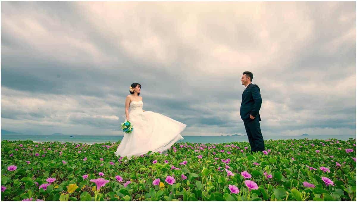 Chụp ảnh cưới với hoa rau muống biển