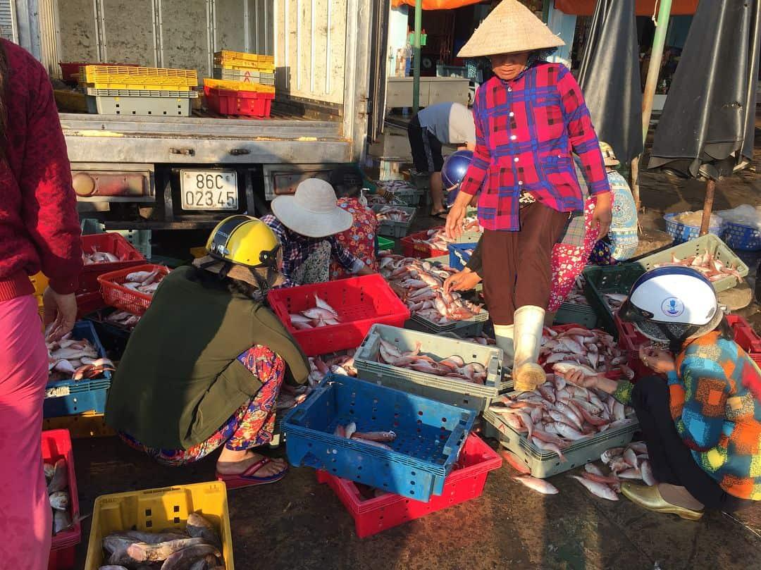 Cảnh sinh hoạt của người dân tại Cảng cá Phan Thiết