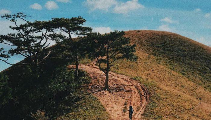 Tà Năng – Phan Dũng, cung đường trekking đẹp nhất Việt Nam